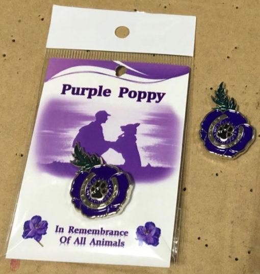 Buy Purple Poppy Pin